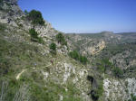 Guided Walking Tours in Spain